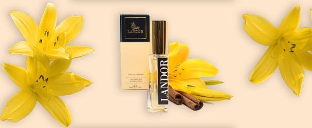 Авторские ароматы парфюмов по самым лучшим ценам