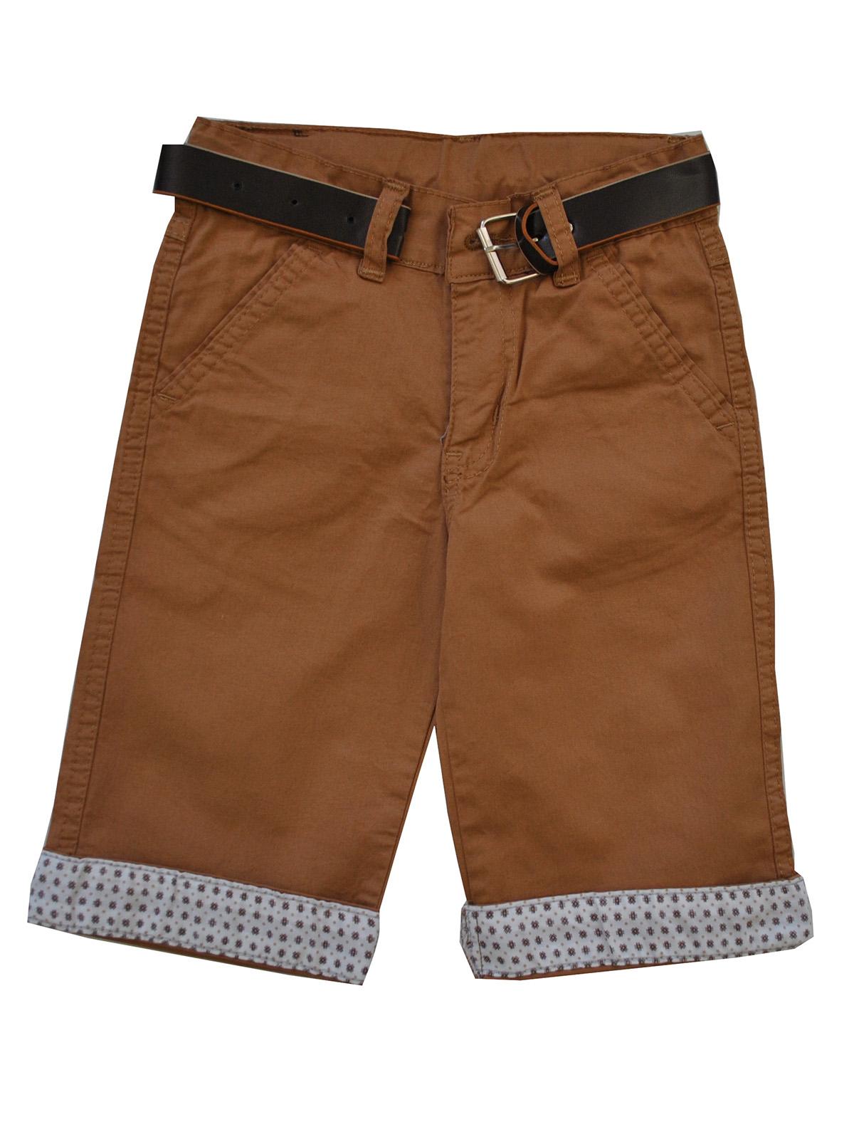 Картинка коричневые шорты