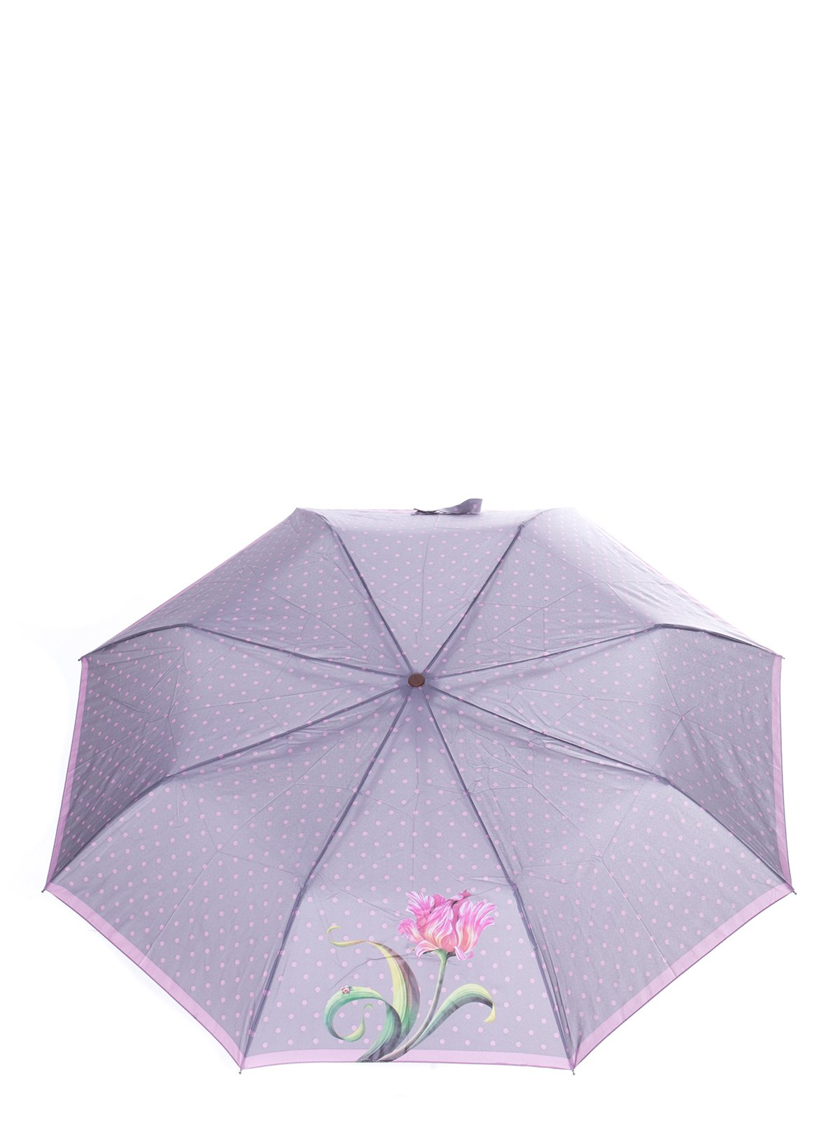 Зонт   3296732