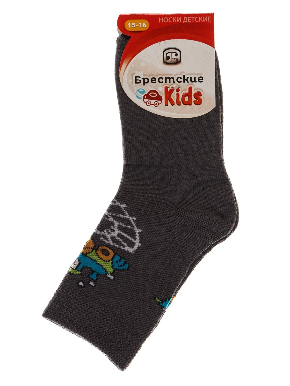 Шкарпетки сірі | 3750559