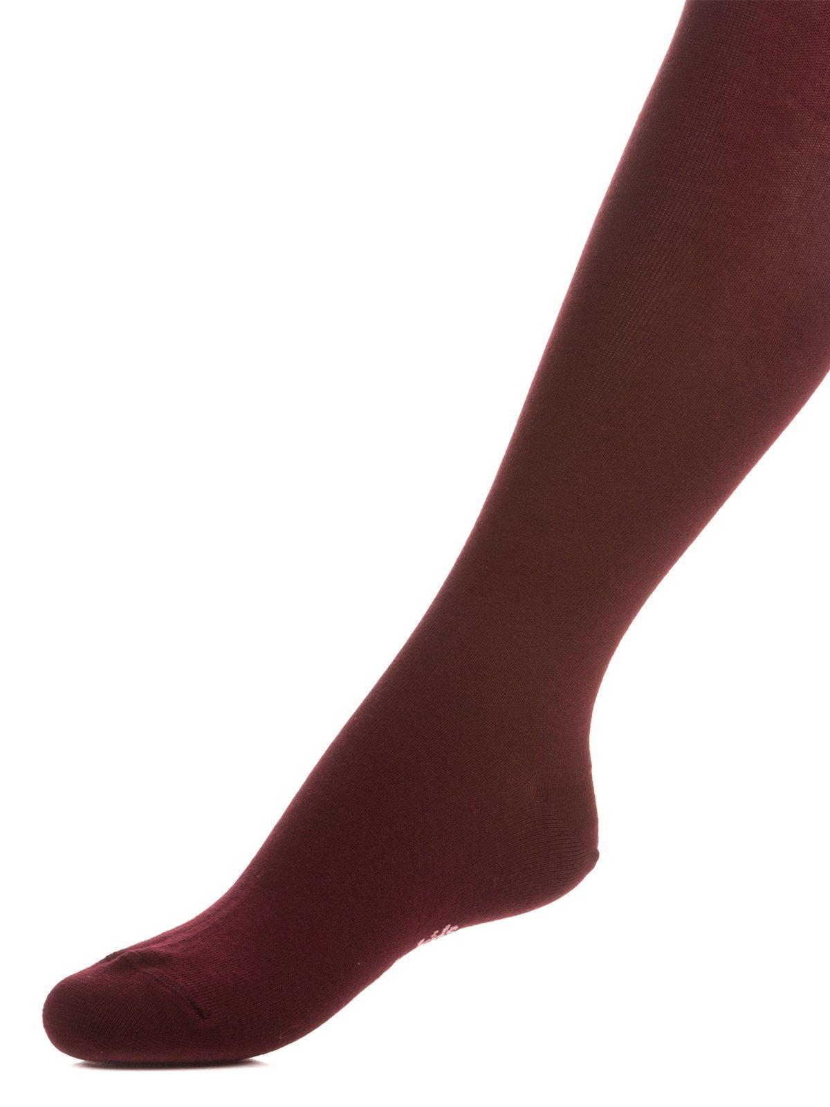 Колготки темно-бордовые | 3750096