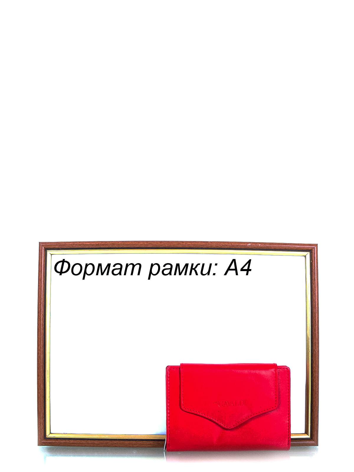 Кошелек красный | 4159036 | фото 8