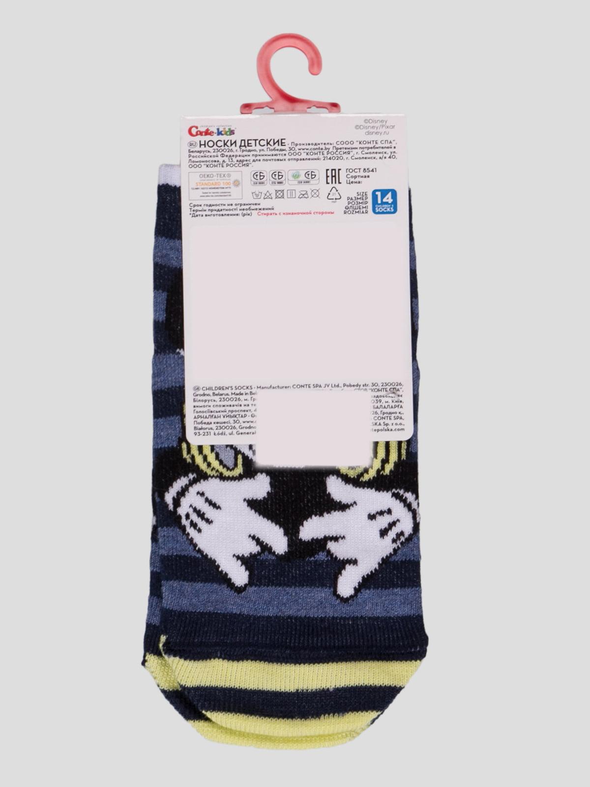 Шкарпетки в смужку з малюнком | 4366803 | фото 2