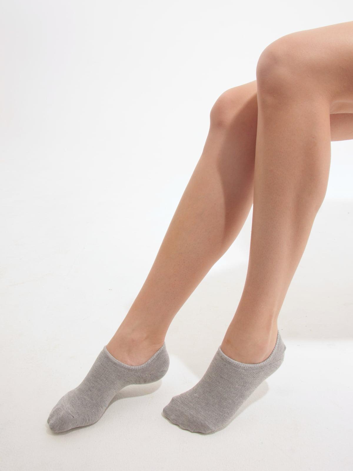 Шкарпетки сірі   2762356   фото 2