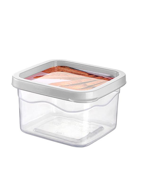 Контейнер пластиковий з кришкою Biscovery (0,55 л) | 4641885
