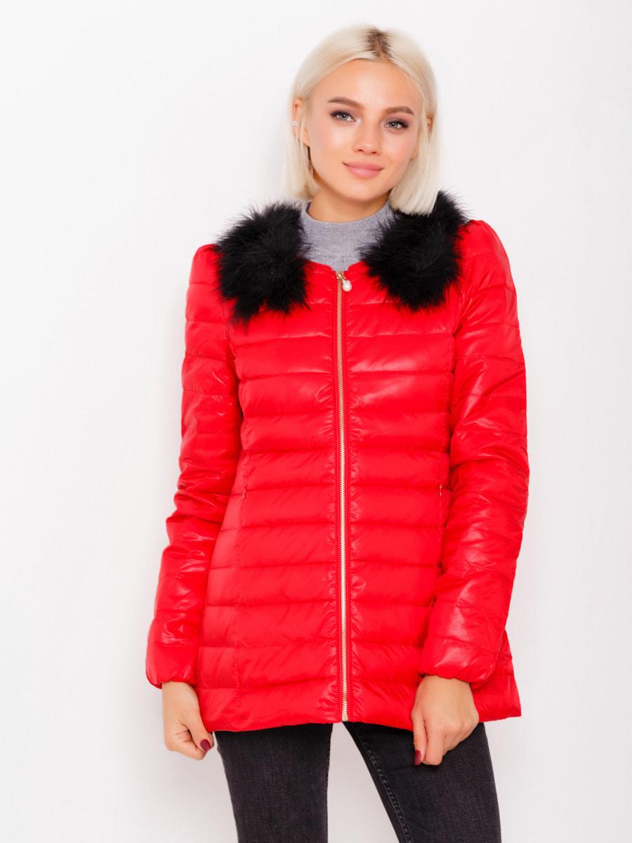 Куртка красная | 4678503
