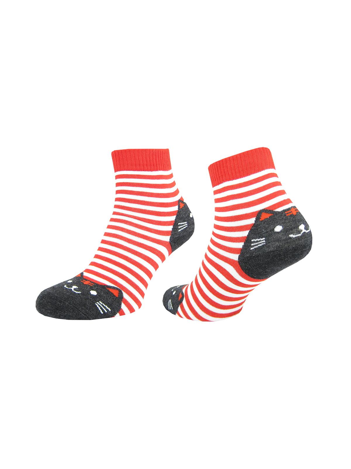 Шкарпетки в смужку | 4887654