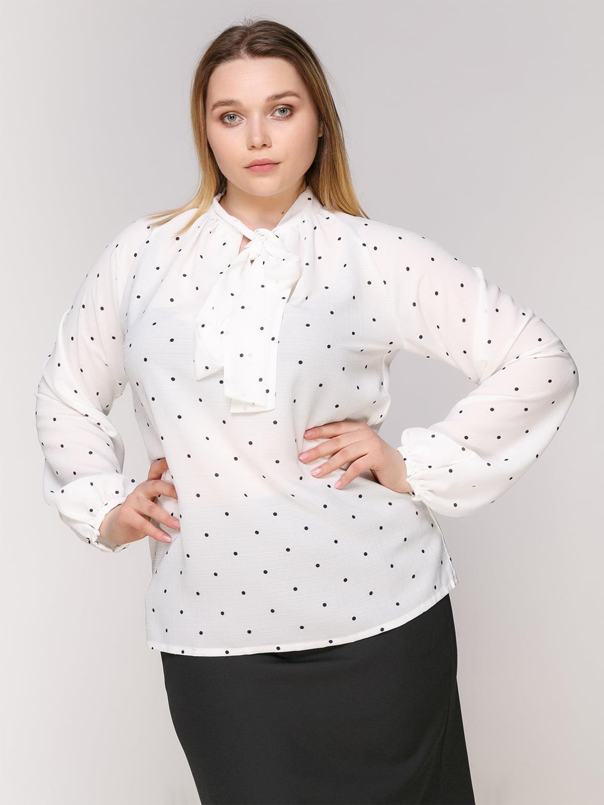 Блуза белая в горох | 4950633