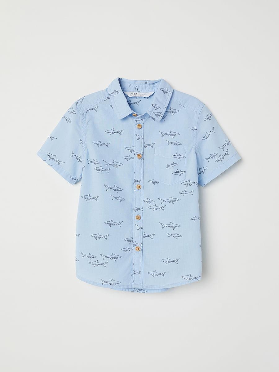 Рубашка голубая | 5046671