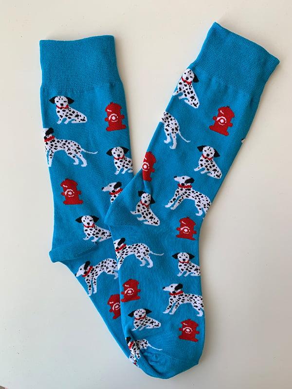 Шкарпетки блакитні в принт | 5106892