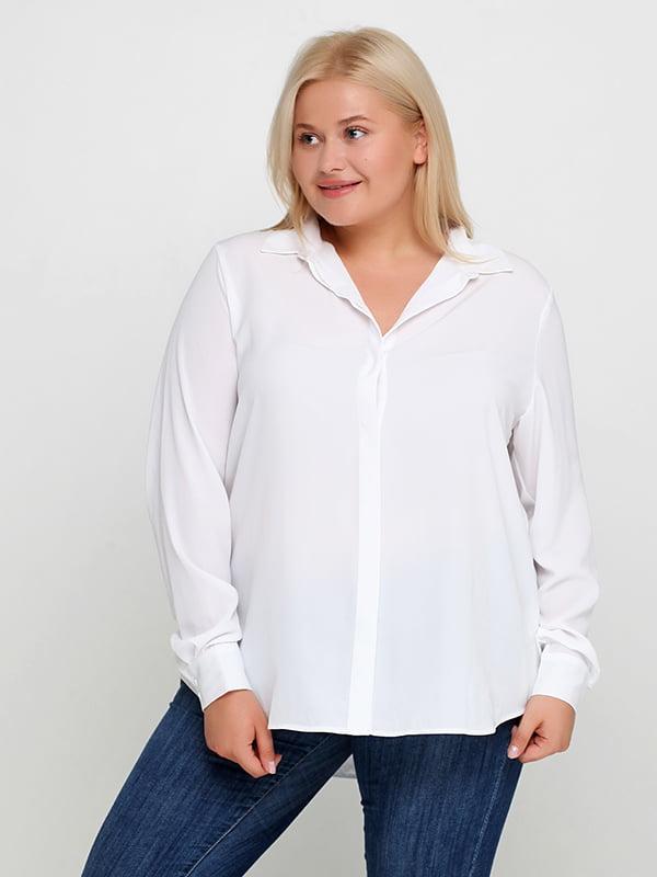 Блуза белая   5172898