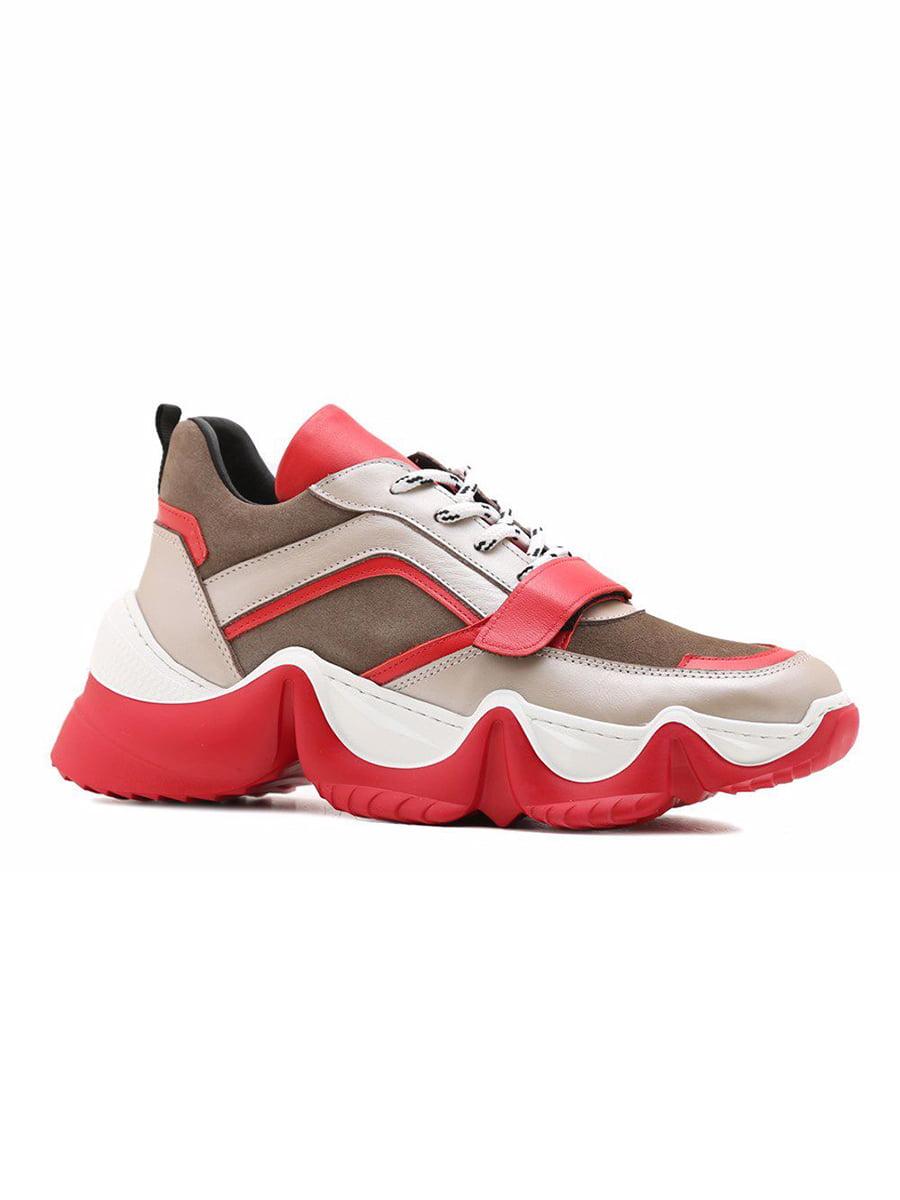 Кросівки триколірні | 5178582