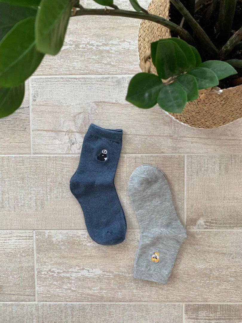 Набір шкарпеток (2 пари)   5187321