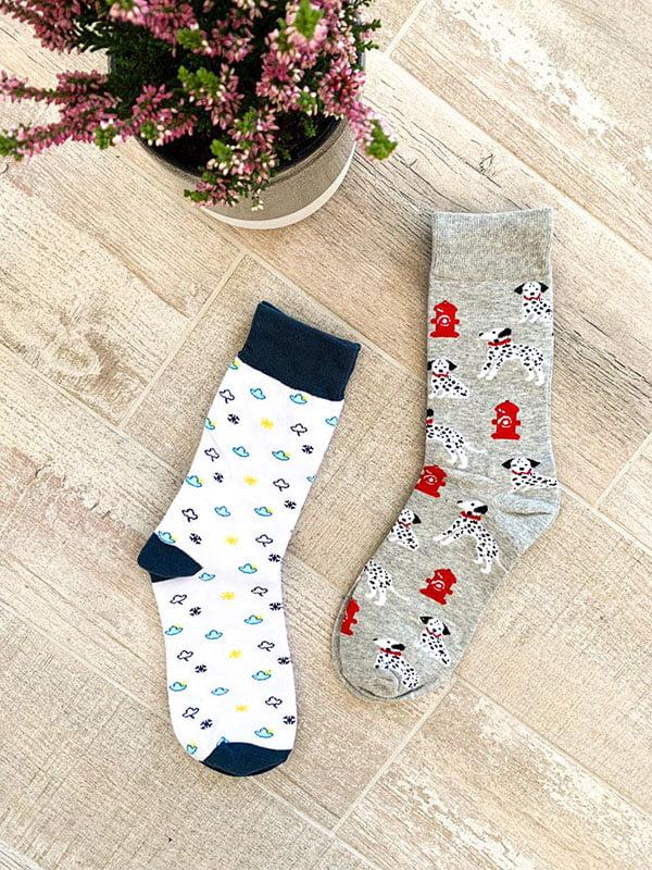 Набір шкарпеток (2 пари) | 5225142
