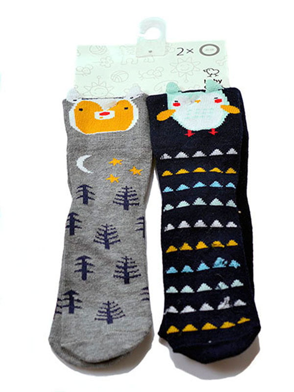 Набор носков (2 пары) | 5326752
