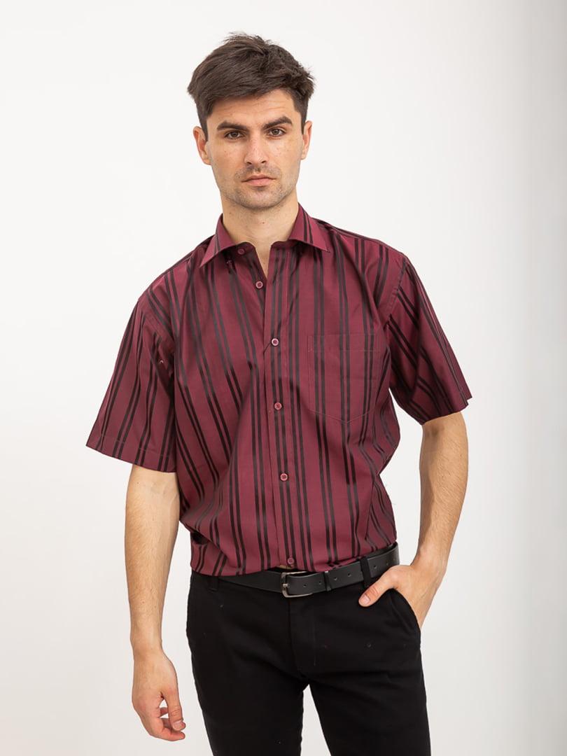 Рубашка бордово-черная в полоску | 5416066