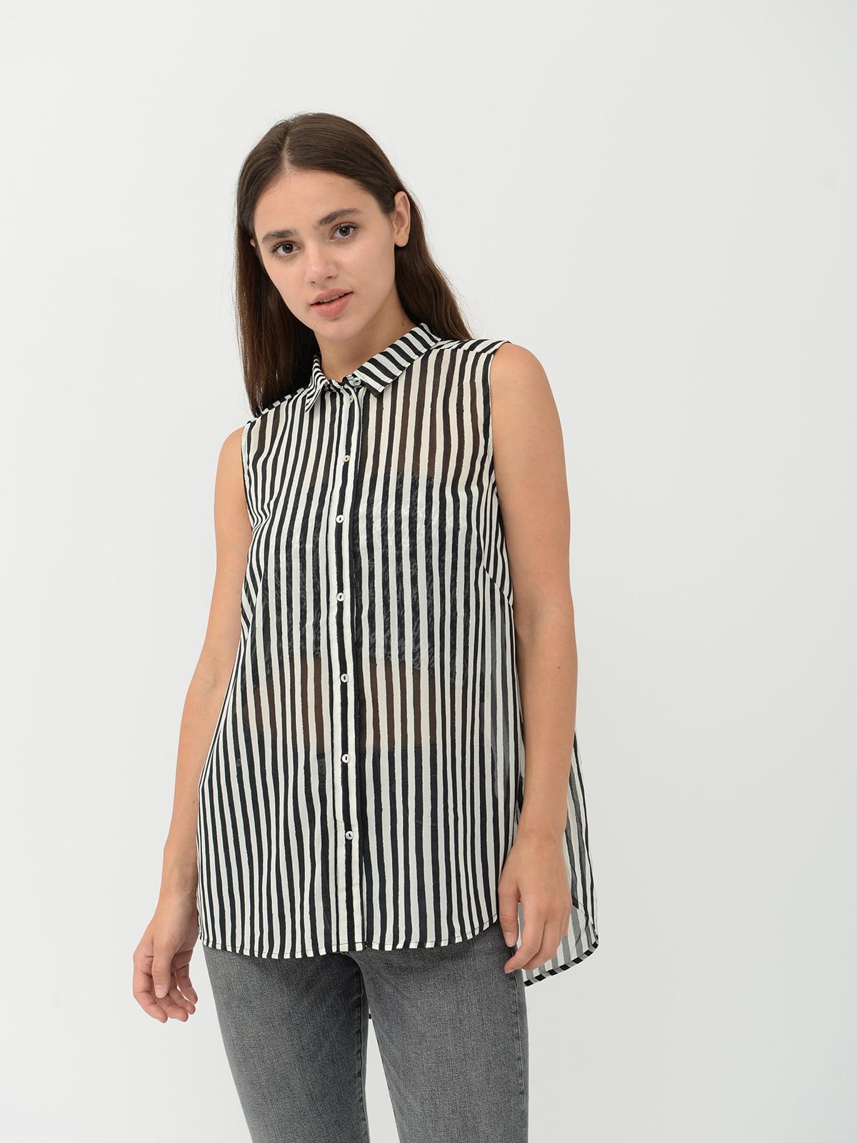Блуза в полоску | 5515429