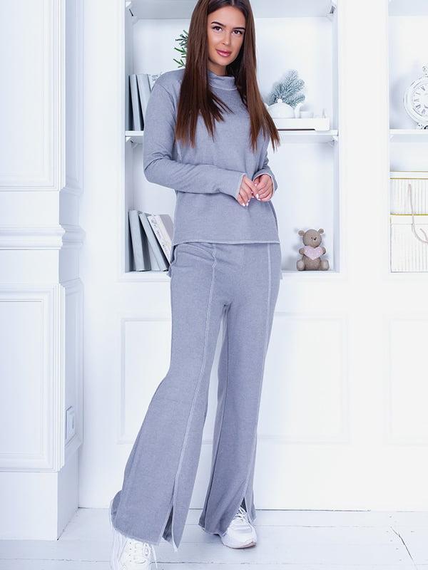 Костюм: світшот і штани | 5560902