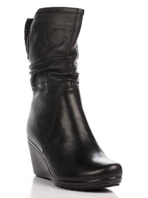 Півчобітки чорні | 1483401
