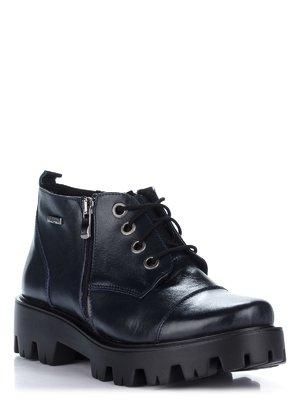 Ботинки синие | 2110214