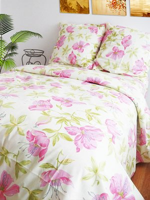 Комплект постельного белья двуспальный (евро)   2194007