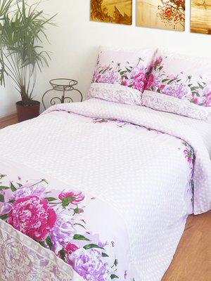 Комплект постельного белья полуторный   2194108