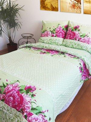 Комплект постельного белья двуспальный (евро)   2194118
