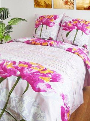 Комплект постельного белья двуспальный (евро)   2194134