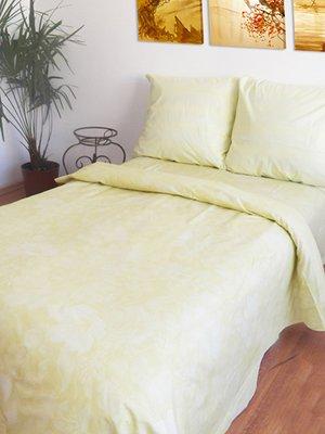 Комплект постельного белья двуспальный (евро)   2194163