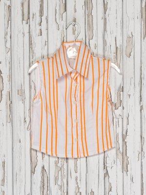 Блуза біло-помаранчева в смужку | 2276003