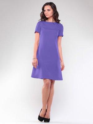 Сукня бузкового кольору | 2326456
