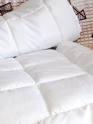 Одеяло (155х215 см)   2331525