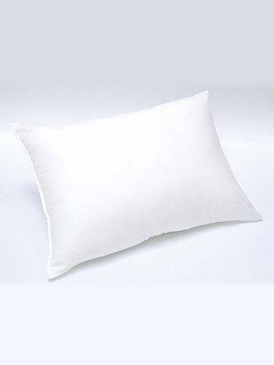 Подушка (50х70 см) | 2331555
