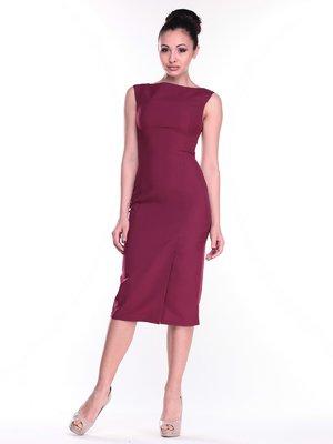 Сукня сливового кольору | 2318516