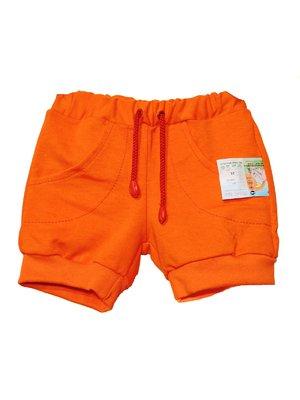 Шорты оранжевые   2235397