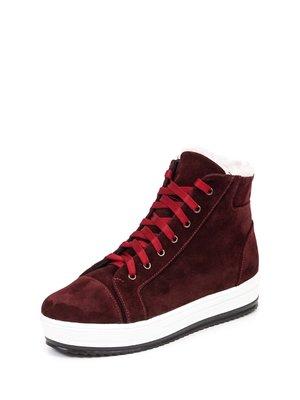 Ботинки бордовые | 2818224