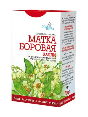 Краплі «Матка Борова» (50 мл) (ФБТ) | 2861374