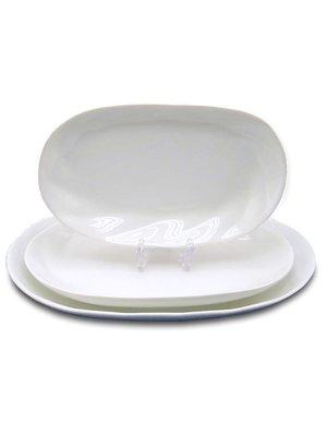 Блюдо овальне (28х18 см) | 2898585