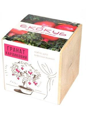Горщик для рослини «Екокуб. Гранат» | 2994941