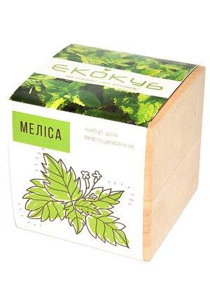 Горшочек для растения «Экокуб. Мелисса» | 2994943