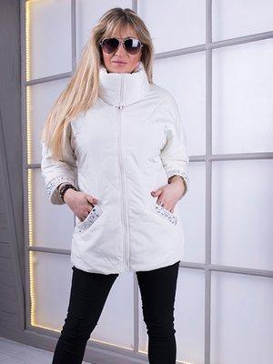 Куртка молочного цвета | 3000073