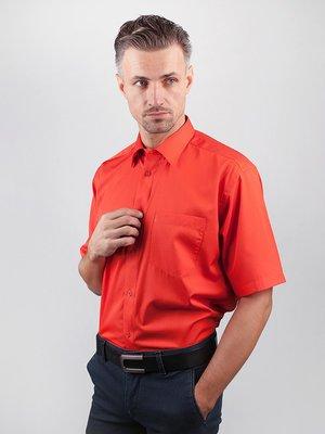 Рубашка коралловая | 3108375
