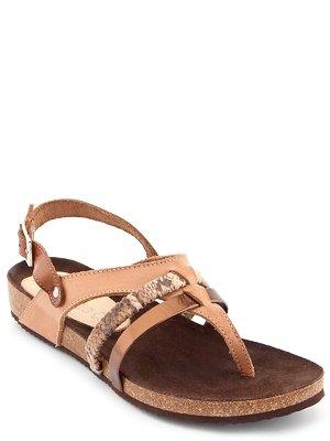 Сандалії-в'єтнамки коричневі | 3128766
