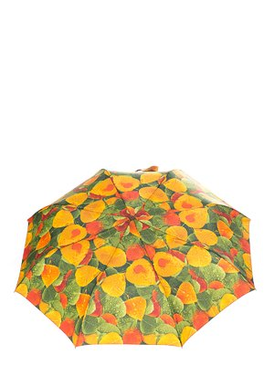 Зонт | 3296705