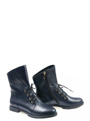 Ботинки синие | 2813749