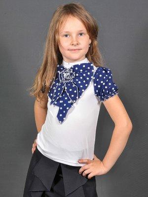 Блуза біло-синя в горошок | 3468494