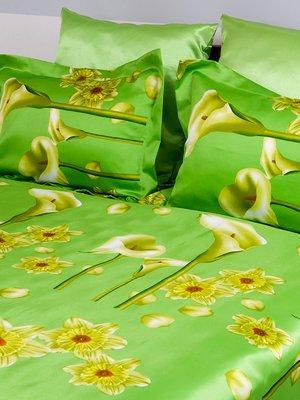 Комплект постельного белья двуспальный (евро) | 3562863