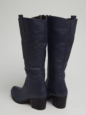 Сапоги темно-синие | 3674275