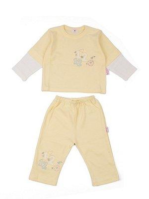 Комплект: реглан і штани | 3702231