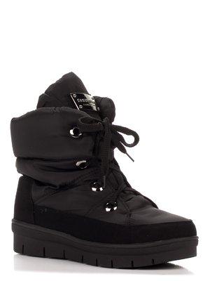 Сапоги черные | 3548980
